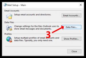 Data Files button